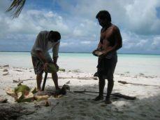 coconut husking lesson